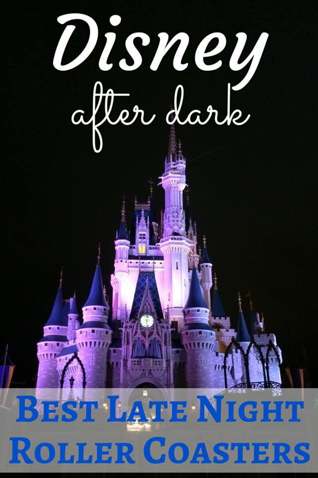 Disney After Dark: Magic Kingdom Rollercoasters Thrill Multigenerational Families