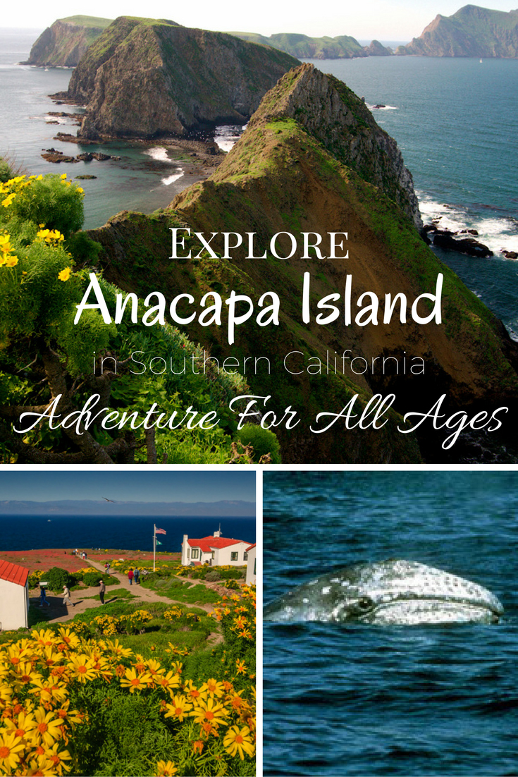 Anacapa Island in Southern California offers adventure for all ages including whale watching, hiking, bird watching & exploring.