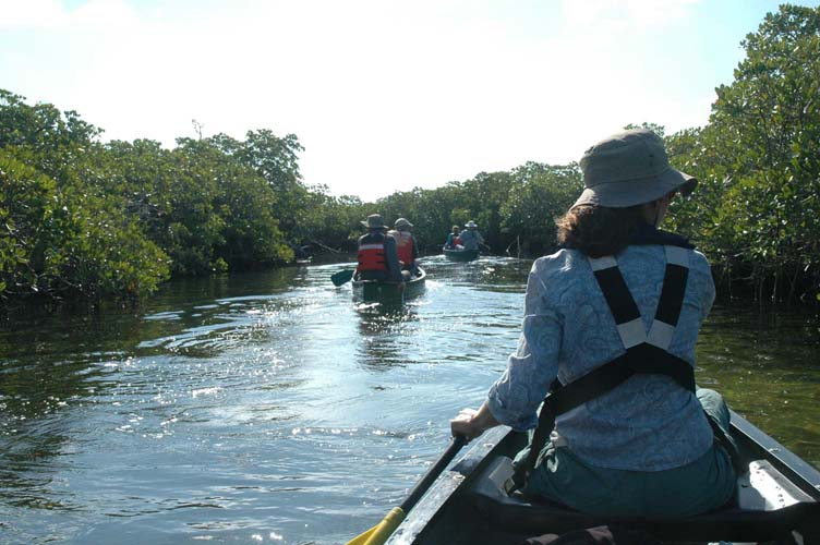 there is so much to do at Biscayne National Park like kayaking