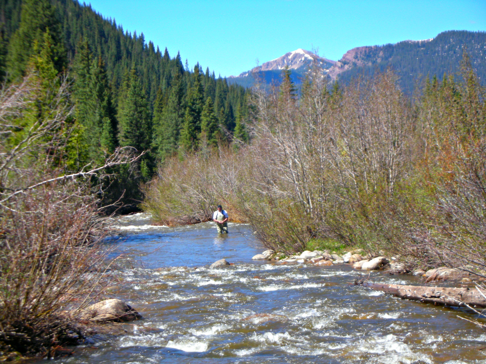Fly fishing adventure in Dolores River near Telluride, Colorado. Photo: Diana Rowe / Traveling Grandmom