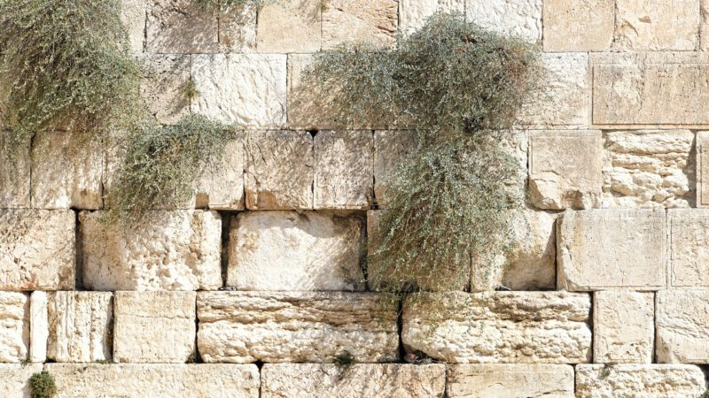 Visit the Wailing Wall in Jerusalem.