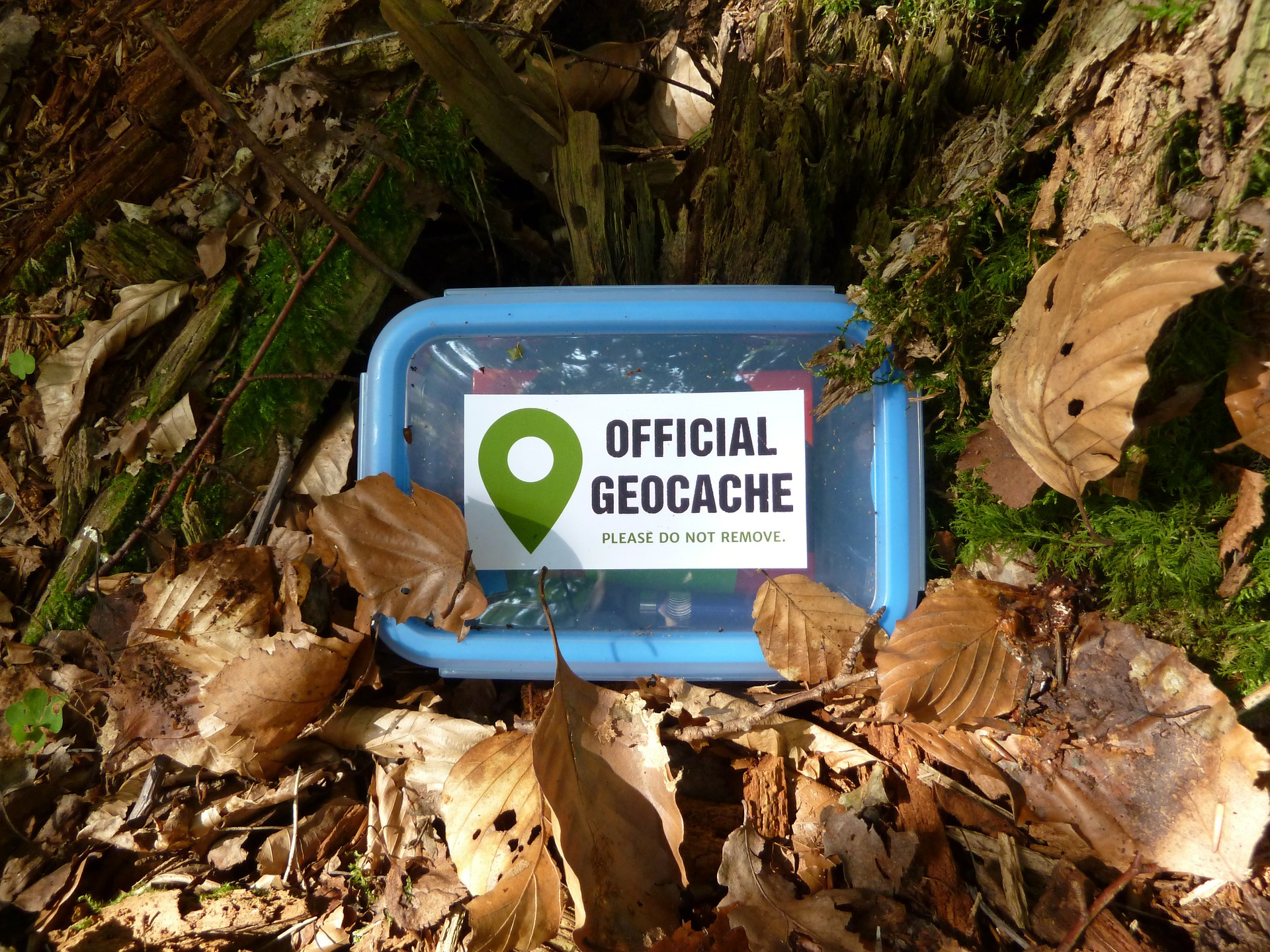 Five Reasons Geocaching Is Fun For Families