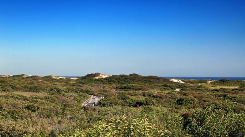 Have you been to Ocean Beach on Fire Island?