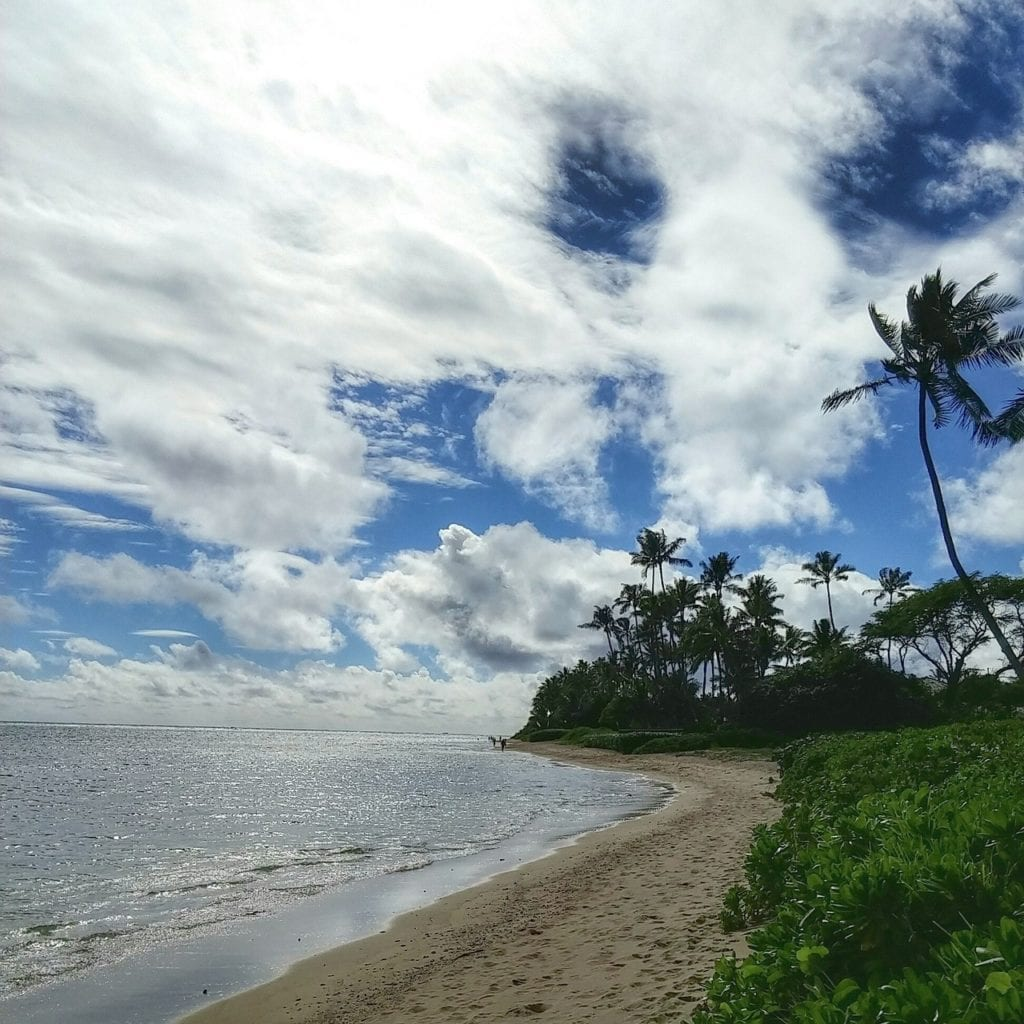 Try celebrating Christmas in a beautiful place like Hawaii