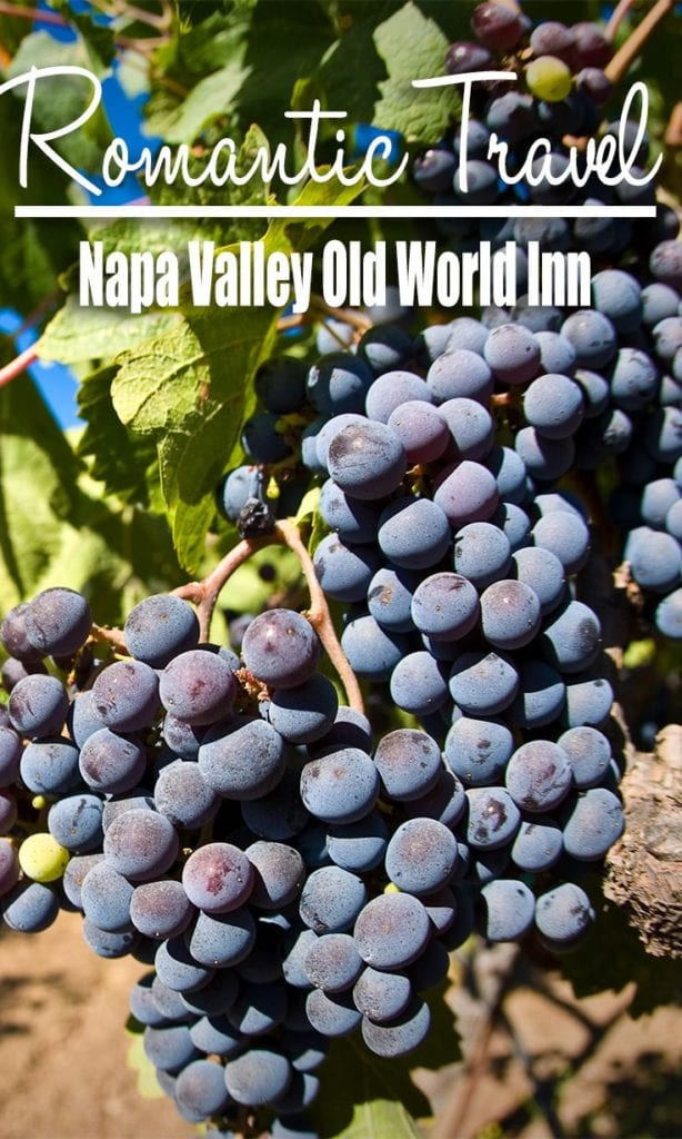 Napa Valley Old World Inn – More Than a B&B