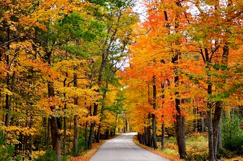 Midwestern fall foliage road trip