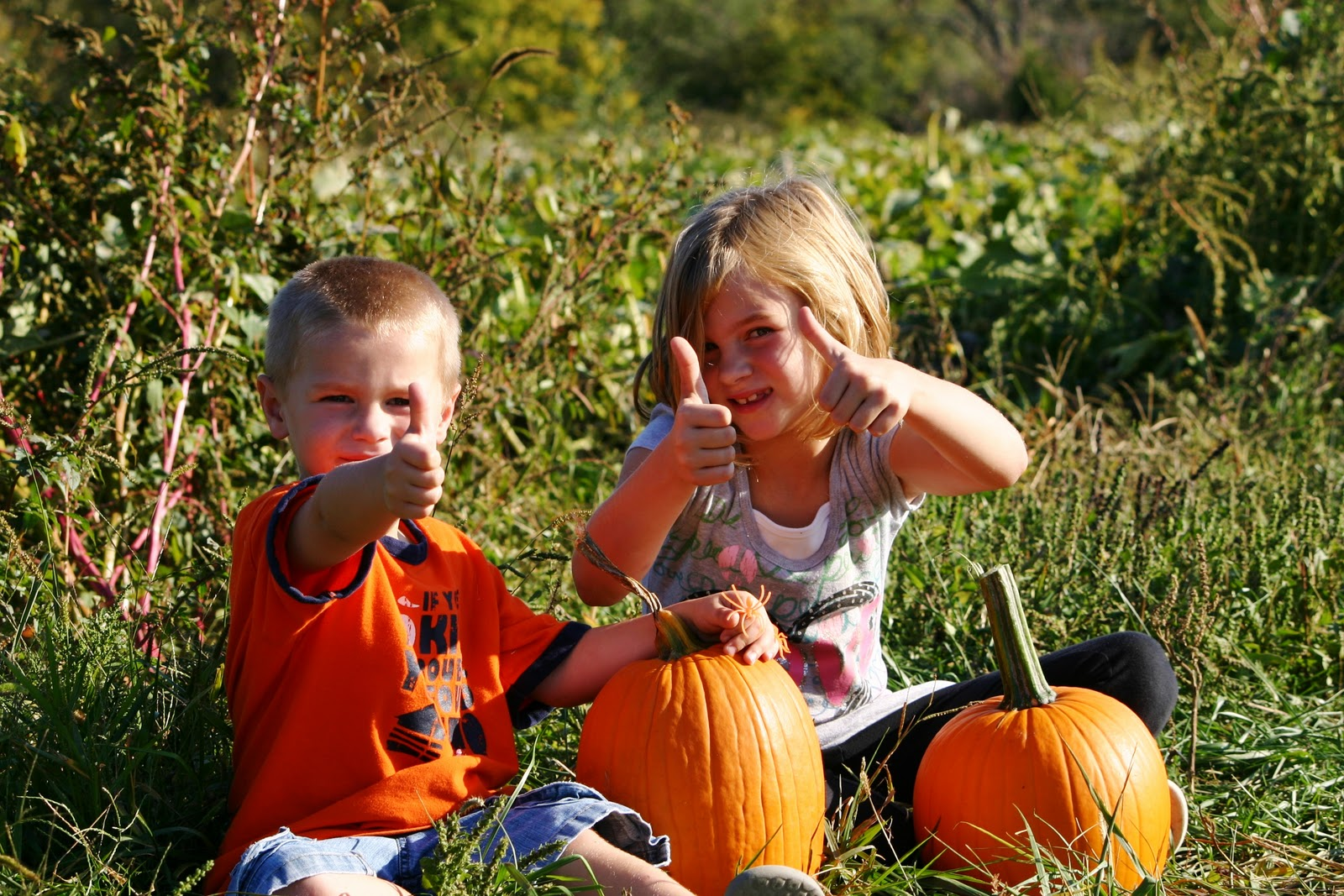 Perryville Pumpkin Farm, Affordable Fall Family Fun in Missouir