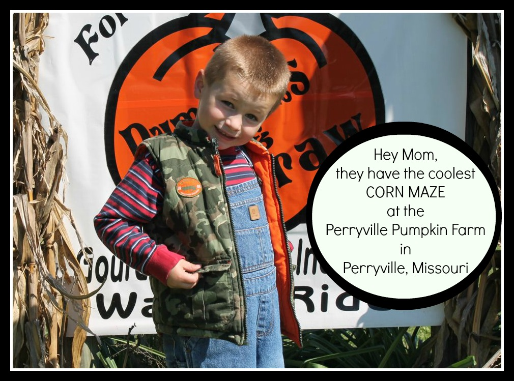 Affordable fall family fun at the Perryville Pumpkin Farm has to include a photo at the corn maze, right