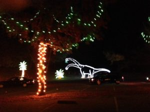 Fantasy of Lights in Los Gatos Credit: courtesy of author