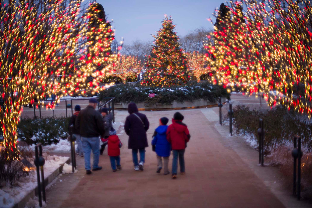 Enjoy Traditions Old and New Throughout Chicago This Holiday Season