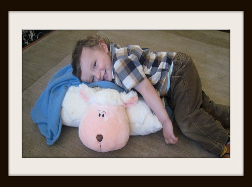 Family Reach Foundation Pillow Pet Giveaway