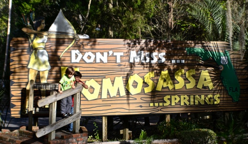 Florida's Homosassa State Park – Not Your Typical Park Experience