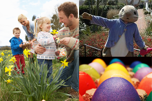 Free things to do in Charlotte for Easter 2014