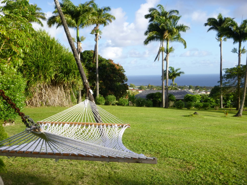 Photo by Jamie Bartosch/Suburban TravelingMom Lay in a hammock and take in views of the Caribbean Sea at Ottley's Plantation Inn in St. Kitts.