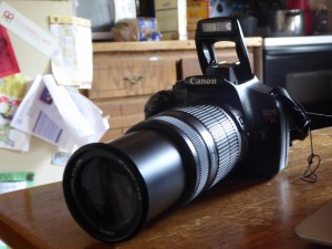 Canon EOS Rebel T3 Fully Expanded.  Photo Credit:  Becky Davenport