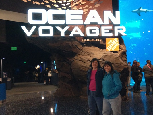 Entrance to Ocean Voyager at the Georgia Aquarium, where they offer shark dives.