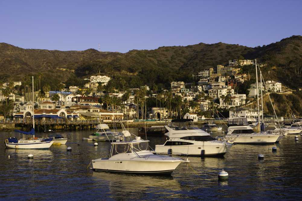 Catalina Island, California