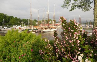 Harbor view of Maine windjammers Photo by Blended Family TMOM Christine Tibbetts
