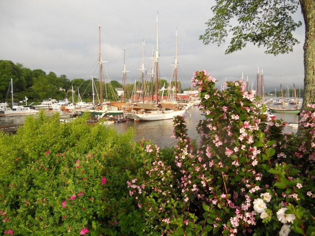 Windjammer Days Festival in Boothbay Harbor: An Annual Free Maine Event