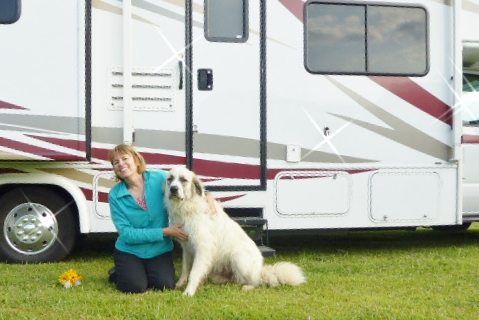 How to Travel with Your Dog on an RV Vacation