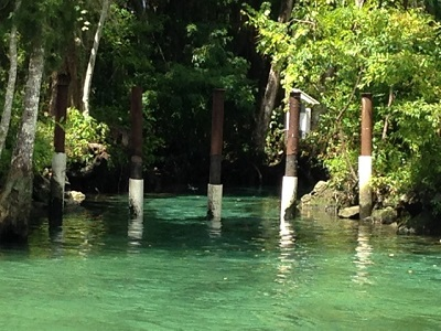 Three Sisters Springs, just beyond the steel barrier, which allows, swimmers, snorkelers, kayakers, canoers and manatees in, but keeps boats out. Photo credit: Scotty Reiss / Driving TravelingMom