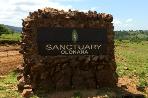 Sanctuary Olonana Sign