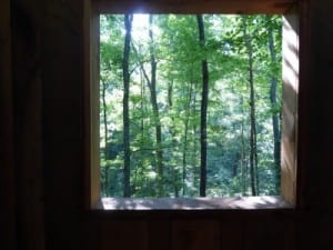 View thru the treehouse window @PopesCreekRanch