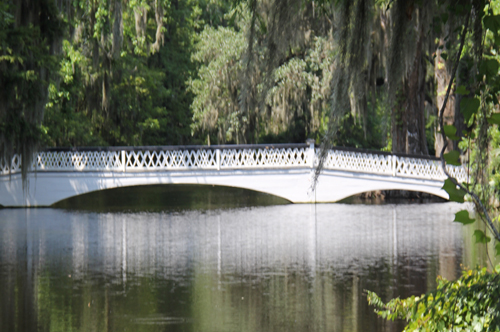 Charleston magnolia plantation bridge Lisa Frame