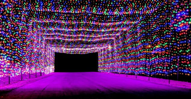 Where to See the Best Holiday Lights Displays in 2017