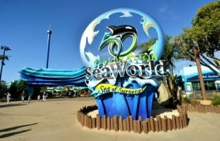 Photo credit: Mike Aguilera/SeaWorld® San Diego