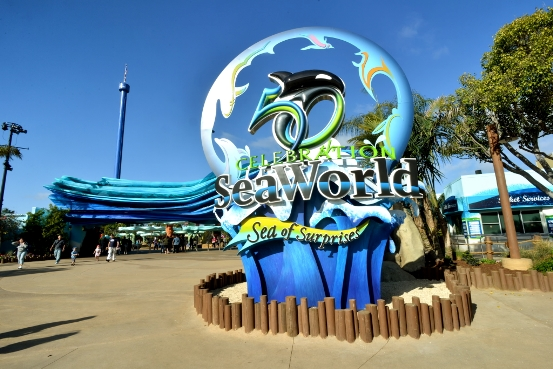 Top Ten Thrills, Chills and Spills at Sea World San Diego