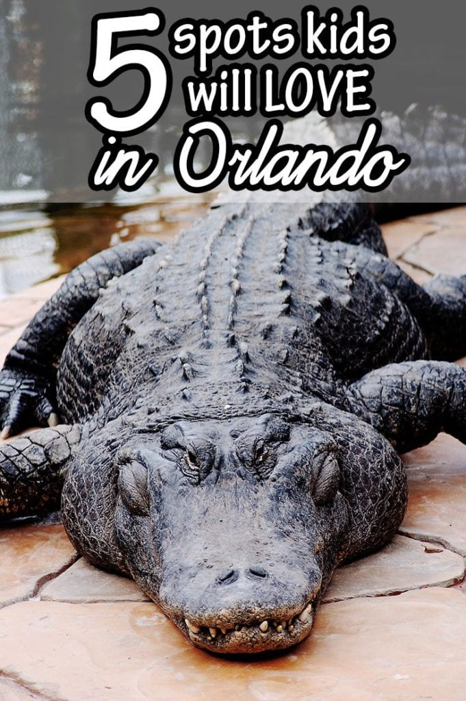 5 Great Things to Do in Orlando with Kids