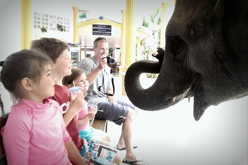 Elephant Trekking in Thailand with Kids
