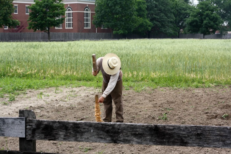 Worker in the Field within Greenfield Village. Photo by Mary Moore / Retro TravelingMom
