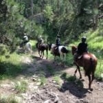 Photo by Jamie Bartosch/Suburban TravelingMom Horseback riding is one way to enjoy the scenery at Custer State Park in Rapid City, South Dakota.