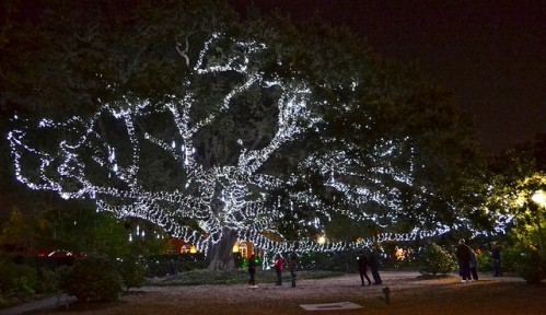 Visiting City Park in New Orleans – Celebration of the Oaks