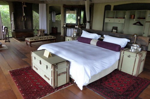 Luxury Camp Review: Mara Plains Camp, Kenya