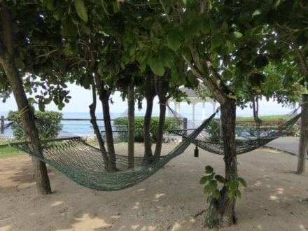 Photo by Jamie Bartosch/Suburban TravelingMom Hammocks under the almond trees at Jewel Paradise Cove Resort & Spa in Runaway Bay, Jamaica