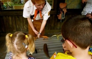 Wilderness Explorer badges propel kids to knowledgeable scouts. Photo by Christine Tibbetts, Blended Family TravelingMom