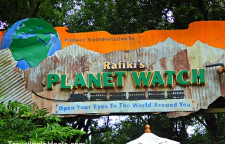 Rafiki's Planet Watch Disney1