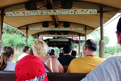 Riding the Kilimanjaro Safaris at the Animal Kingdom.