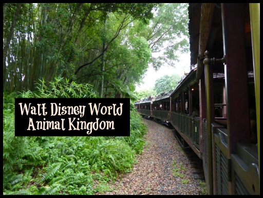 How to Get the Most out of Disney Parks Animal Kingdom