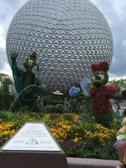 'epcot  during flower festival'