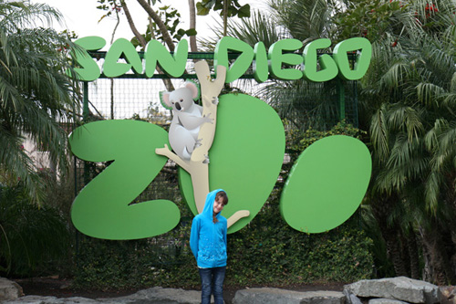 San Diego Zoo In A Single Day California Attractions Travelingmom