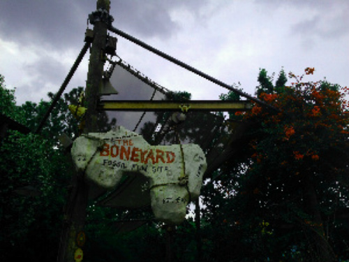 DinoLand's Boneyard, Photo by Terri Marshall, Globetrotting Grandmom