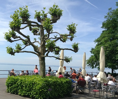 Lake Constance has numerous outdoor cafes