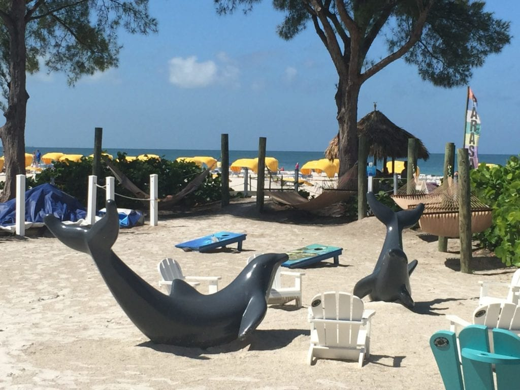 Find out how to get the Caribbean beach experience in St. Petersburg Florida