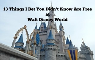 13 Things I bet you didn't know are free at Walt Disney World