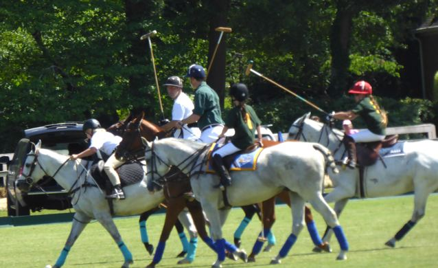 Aiken SC family polo