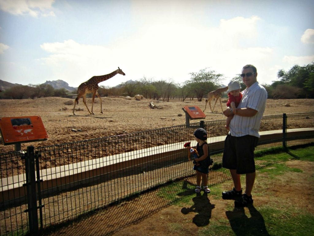 Al Ain Zoo in the UAE. Photo by Keri Hedrick